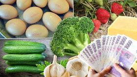 Ceny letí vzhůru: Zdražily jogurty, papriky i sýr. O kolik?