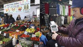 Medovina povinně s účtenkou, med bez: Trhovci a farmáři bojují s Babišovým EET