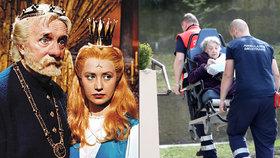 Foto, ze kterého bolí srdce: Převoz princezny Lady Kyselkové (81)!