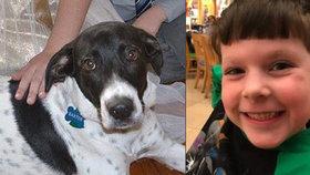Pes uškrtil chlapečka (†5)! Zvíře tahalo za šátek dítěte tak silně, až zemřelo