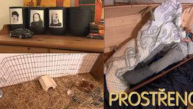 Tohle jste v Prostřeno ještě neviděli: Ajťák Karel spí v rakvi a na zdech má nahé babičky!