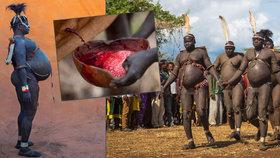 Bizarní soutěž etiopského kmene: Svobodní muži závodí, kdo za půl roku nejvíc ztloustne!