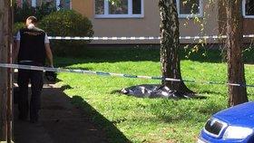 Mrtvola pod okny paneláku v Krči. Kolemjdoucí zaslechla výstřel
