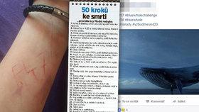 Hra Modrá velryba děsí Čechy: Desítky z nich kontaktovaly policii!