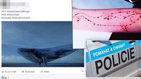 Mladík (†18) z Havířova zemřel po pádu z okna: Je za jeho smrtí »Modrá velryba«?