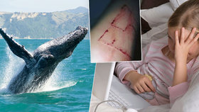 Vyhrožují mi z Modré velryby: Dívenka z Pelhřimovska (11) si vymyslela, že je obětí sebevražedné hry