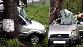 Smrt na sedadle spolujezdce: Auto u Budějovic vyletělo ze silnice přímo do stromu