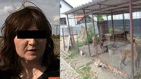 Matka Mirečka (†5), kterého roztrhali psi, je v péči psychiatrů: U soudu obvinila otce