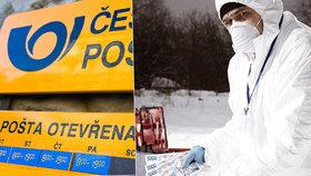 Běžte umýt mince, já vyčistím bankovky: Falešný policajt fingoval chemický útok a vykradl poštu na Hodonínsku