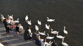 Vedra v Praze na ústupu. Ochladí se, o víkendu čekejme teploty okolo dvacítky