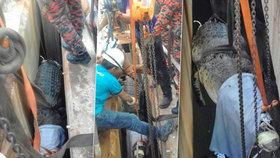 Video záchranné akce: Obrovský krokodýl uvízl v kanále, vyprošťovali ho 10 hodin