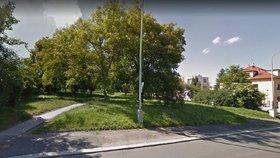 Park Zelený pruh v Braníku obnoví. Zvelebovat ho začnou už v létě