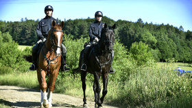 Celé město plné policistů: Ve Slavičíně pátrají po lupičích, kteří ukradli 884 tisíc korun