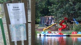 Kvalita vody na Šeberáku jako na houpačce: Opět se tam nevykoupete