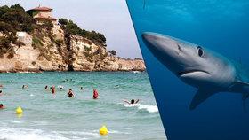 Austrálie nasadí do boje se žraloky vojenské drony. Zvíře najdou i 9 metrů pod vodou