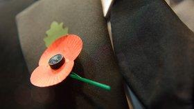 Den válečných veteránů: Kde se vzal květ vlčího máku?
