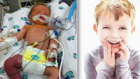 Malý bojovník (†5) dostal nové srdce: Měsíc po propuštění umřel
