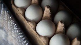 Toxická vejce v Česku? Produkty z Belgie a Nizozemí musí být před prodejem otestovány