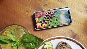 Jak vyfotit dobrou fotku mobilem? Pár triků, které dovedou vaši fotku k dokonalosti