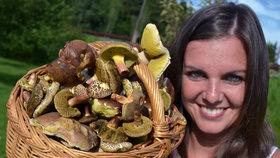 Češi budou moci sbírat houby pro stát. Šumavský projekt za miliony dotuje EU