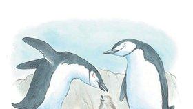 Gay rodiny jsou proti přírodě, říkají odpůrci. Kniha Tango dokazuje opak na reálném příběhu tučňáků