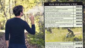 V lese číhají vysoké tresty: Za cigárko na houbách 15 tisíc, za pobíhajícího psa 30 tisíc!