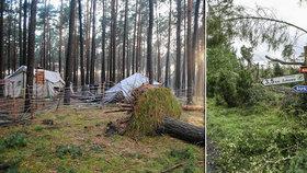 Tragédie na skautském táboře. Dvě spící dívky zabil ve stanu vichrem vyvrácený strom