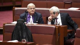 Pravicová senátorka přišla na jednání v burce. Nebyly jí vidět ani oči
