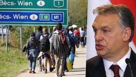 Nizozemsko přirovnalo Orbánovu vládu k náboženským fanatikům, Maďaři stáhli velvyslance