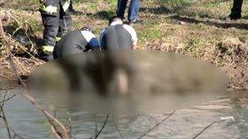 Michala (†54) zavraždili dva mladíci. Starší se oběsil v okně ve vězení! Neunesl pocit viny