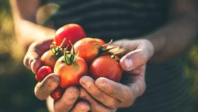 Biopotraviny: Jsou opravdu zdravější, nebo jde jen o peníze?