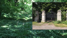 Tajemný hřbitov bláznů získala Praha 8. Opraví ho, pohřbívat se tam ale nebude