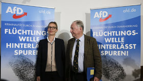 """Vzývání nacistů, rasismus: Německá kontrarozvědka zvažuje sledování """"Klausovy"""" AfD"""