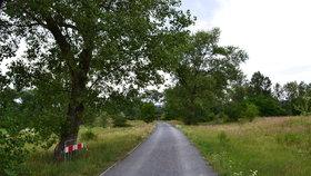 Kolem sídliště v Ďáblicích vznikne nová silnice. Auta se po ní ale neprojedou