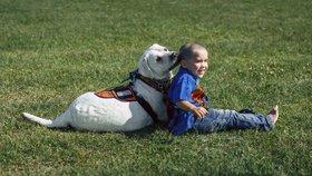 Chlapec s autismem už díky svému psímu kamarádovi nebije hlavou o zeď!
