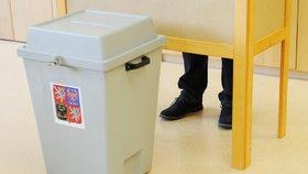 Komise špatně počítaly kroužky, zuří voliči. U soudu už je 7 stížností