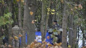 Oběšenec v lesíku u Pražského okruhu: Sebevraždu zřejmě spáchal bezdomovec