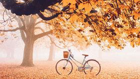Fotky podzimu z celého světa: Kde je nejkrásnější?