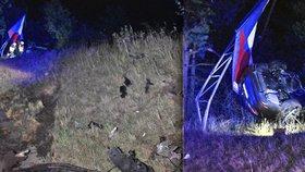 Řidička u Mníšku srazila jelena: Skončila napasovaná v billboardu