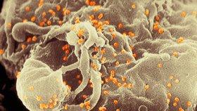 Lékař šířil mezi svými pacienty HIV. Nakazil 437 dětí, čtyři z nich zemřely
