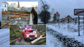 Vichřice v Česku má třetí oběť. Škody jdou do stovek milionů