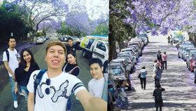 Turisté kvůli selfie blokují dopravu. Vzali útokem květinovou ulici v Sydney
