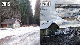 Největší lesní kalamita v dějinách Česka: Stromy v Jeseníkách »sežralo« sucho, zbyly jen holiny! Hrozí povodně