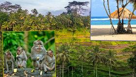 Překrásné a nespoutané: Bali uchvátilo už i Čechy
