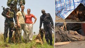 Češi si pletou zvíře s dítětem, říká kynoložka. Sama trénuje psy na lov pašeráků v Kongu