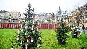 Na náměstí Míru soutěží vánoční stromky zdobené dětmi. Vítěz poputuje do kostela