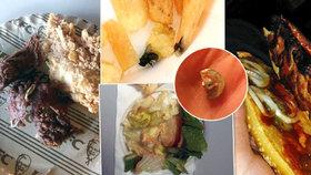 Hnus z fast foodu. Češi našli knoflík v burgeru, spálené maso a dokonce hmyz