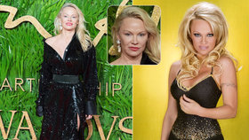 Pamela Anderson k nepoznání: A vy jste kdo, dámo?