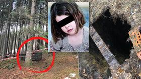Holčička (4) si hrála v lese na schovávanou a propadla se do šestimetrové studny!