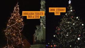 Hodonín přišel o Vánoce! Lidé jsou v šoku: Strom, který tu svítil 50 let, chtějí pokácet